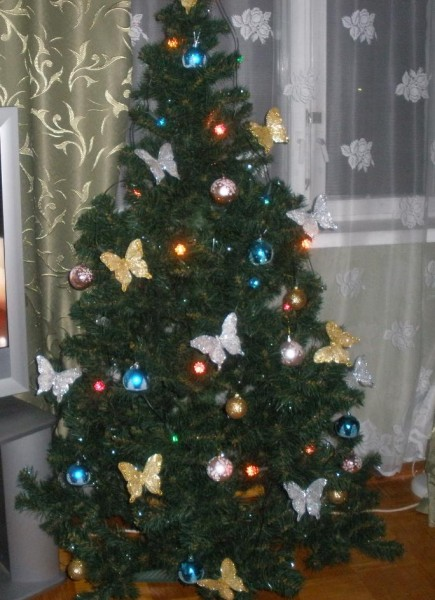 елка 2013 года.jpg
