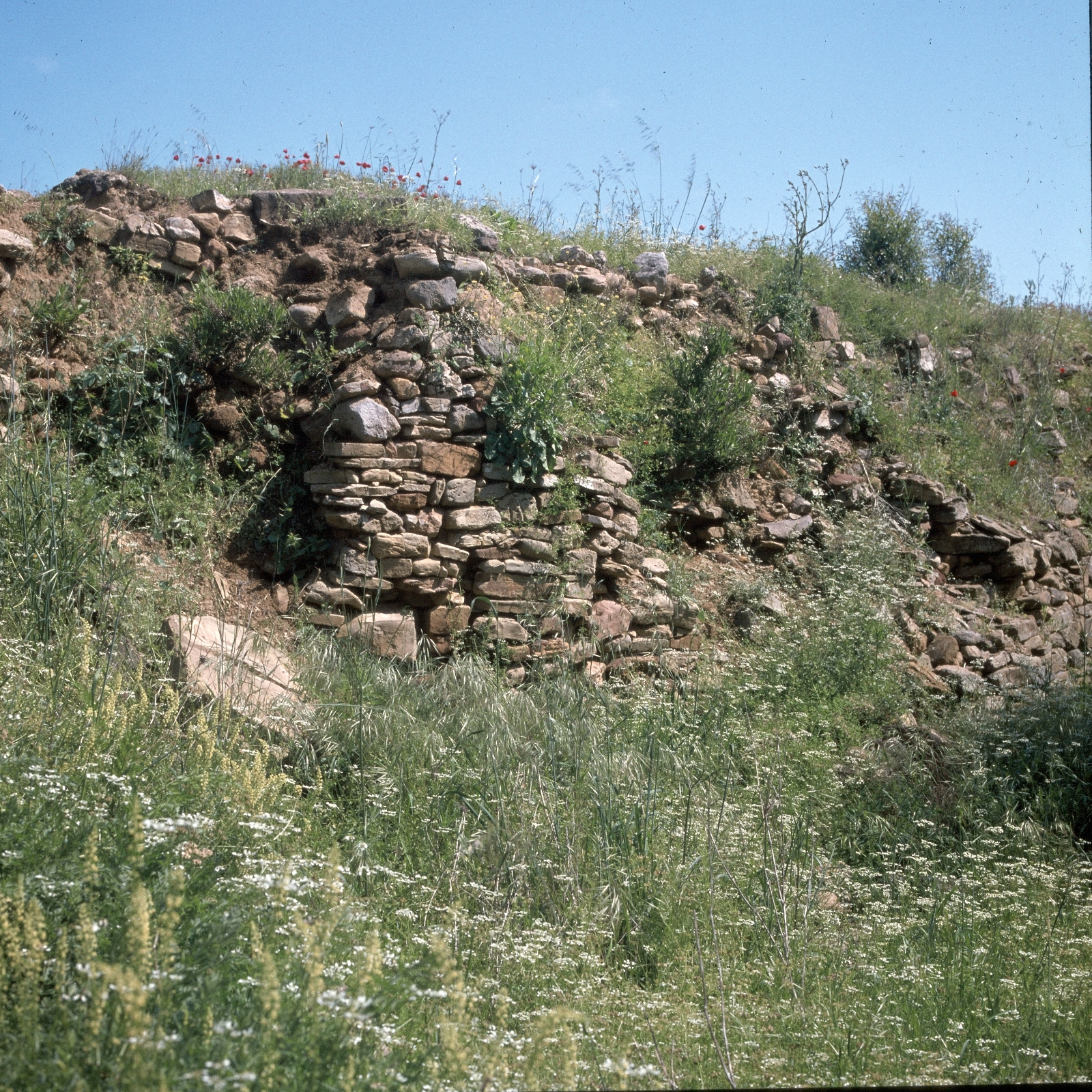Древнейшее неолитическое поселение Полиохни. Крепостная стена