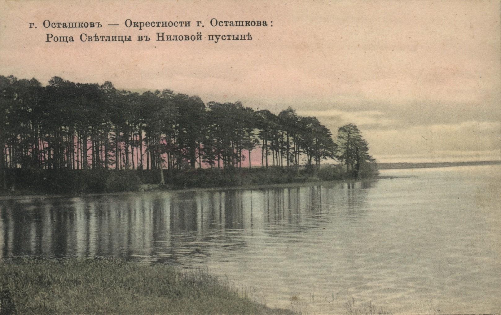 Окрестности Осташкова. Роща Светлица