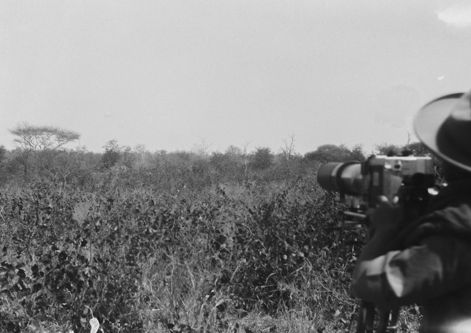 Национальный парк Крюгера. Вид саванны.  Пол Либеренц на снимке во время съемки