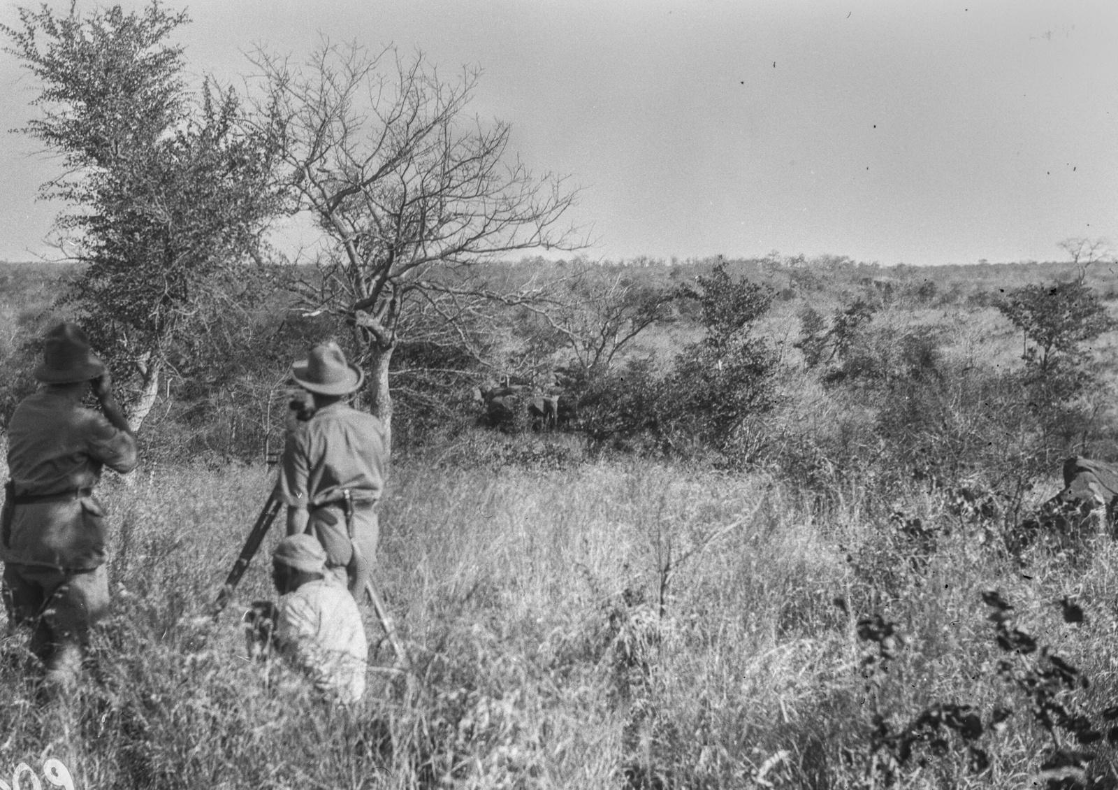 Национальный парк Крюгера. Участники экспедиции делают пейзажные фотографии