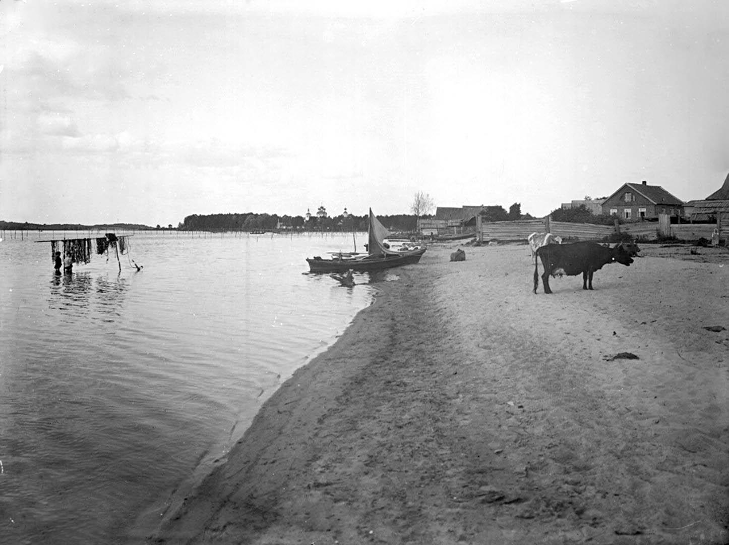 Общий вид города Осташкова и Житного монастыря. 1903