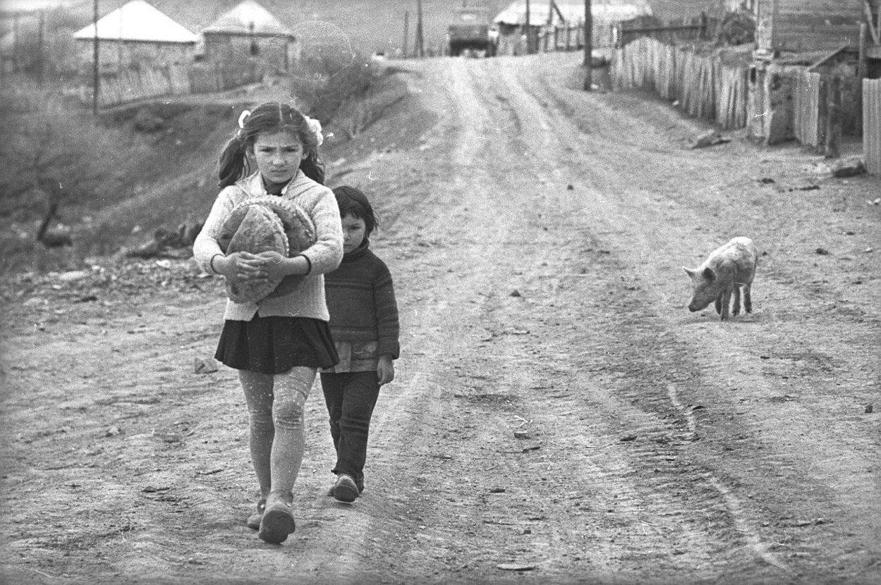 1971. Гуджарети. Девочки и поросенок