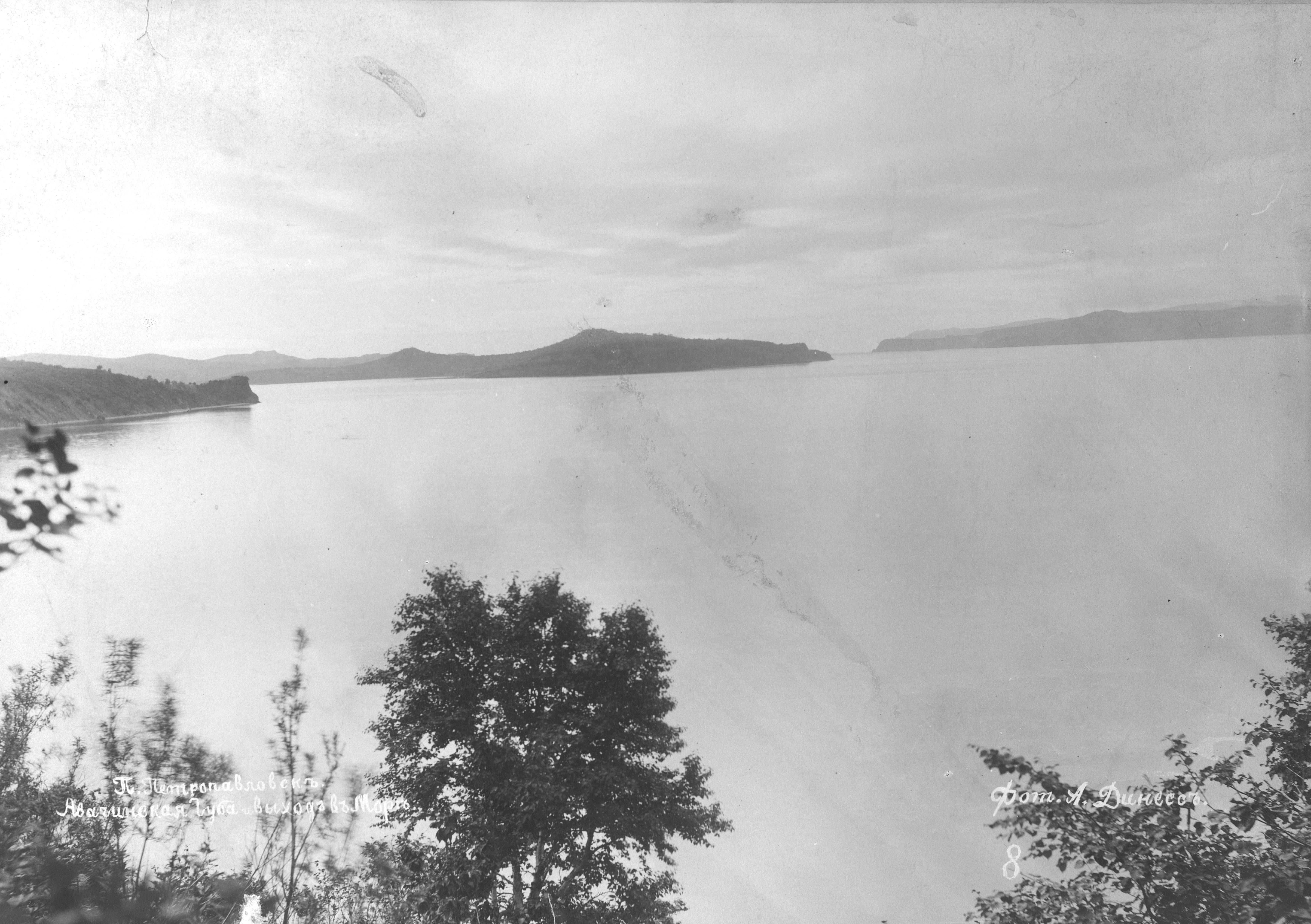 1895 (5)