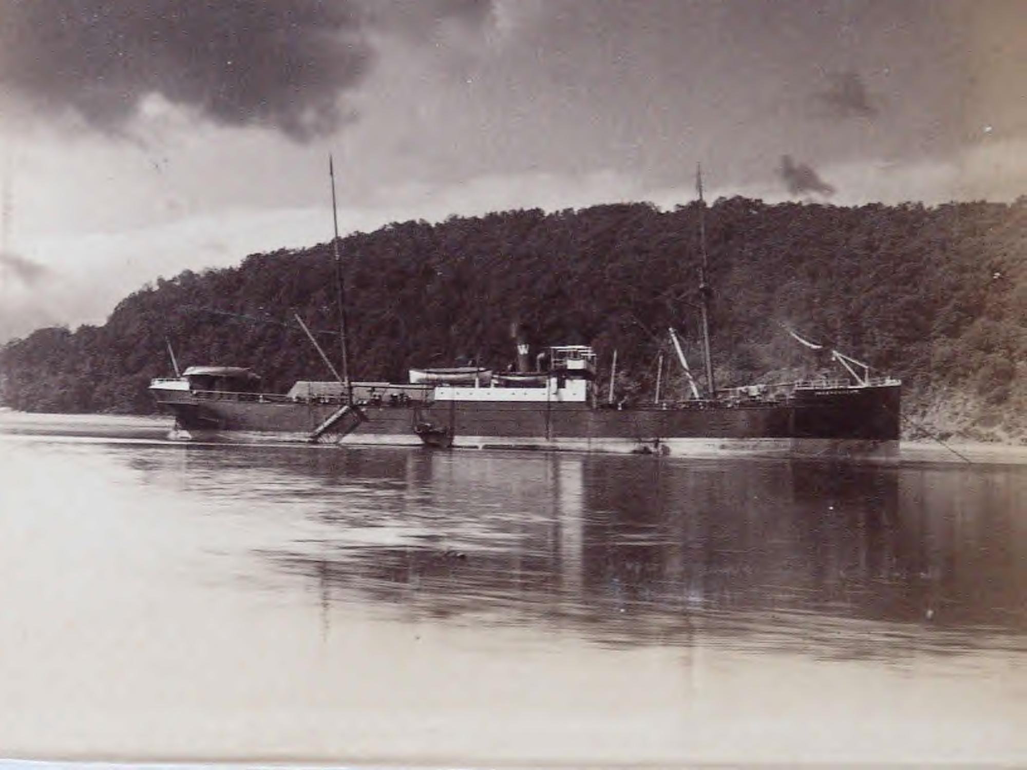 1895 (11)