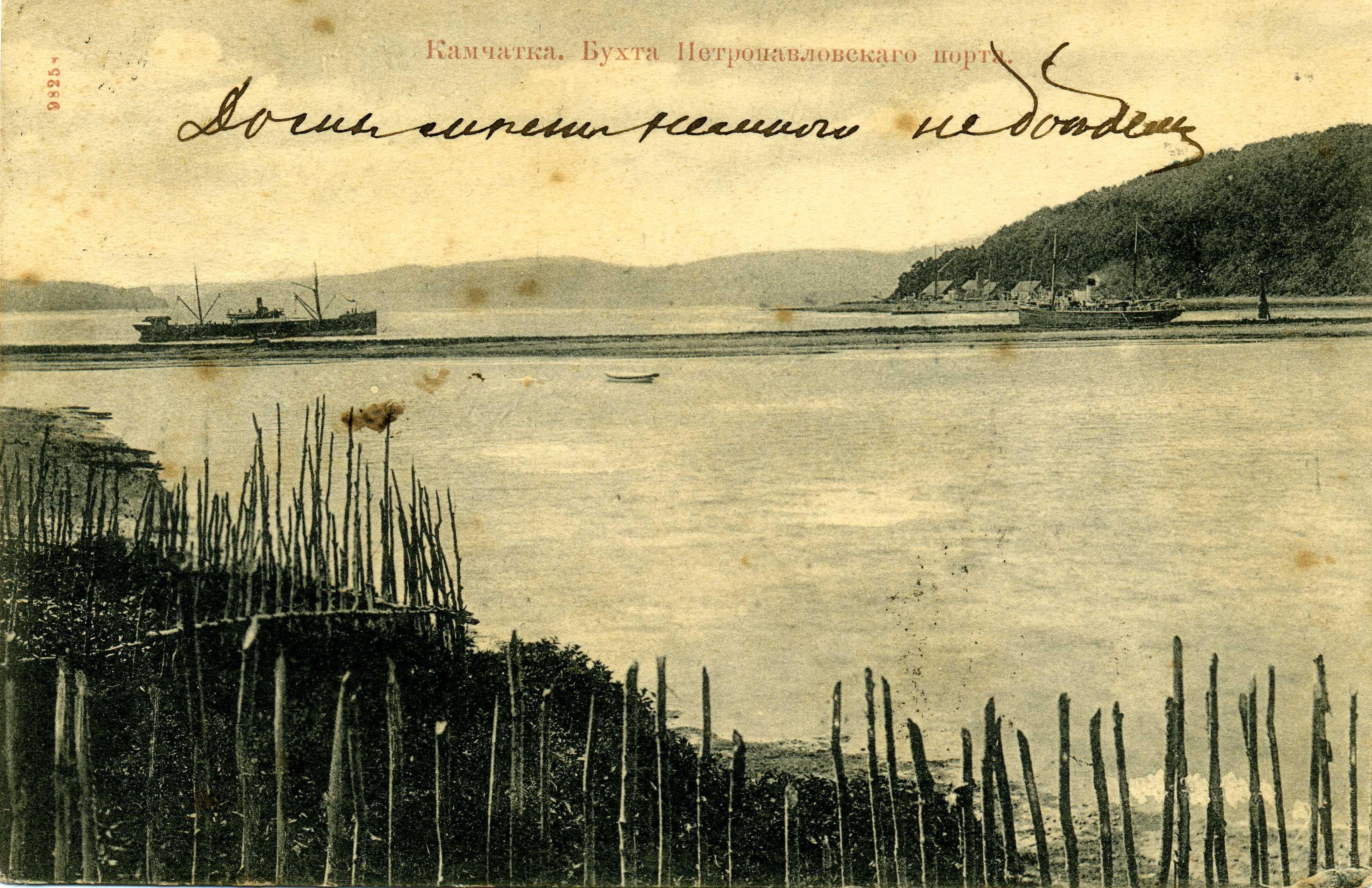1895 (13)