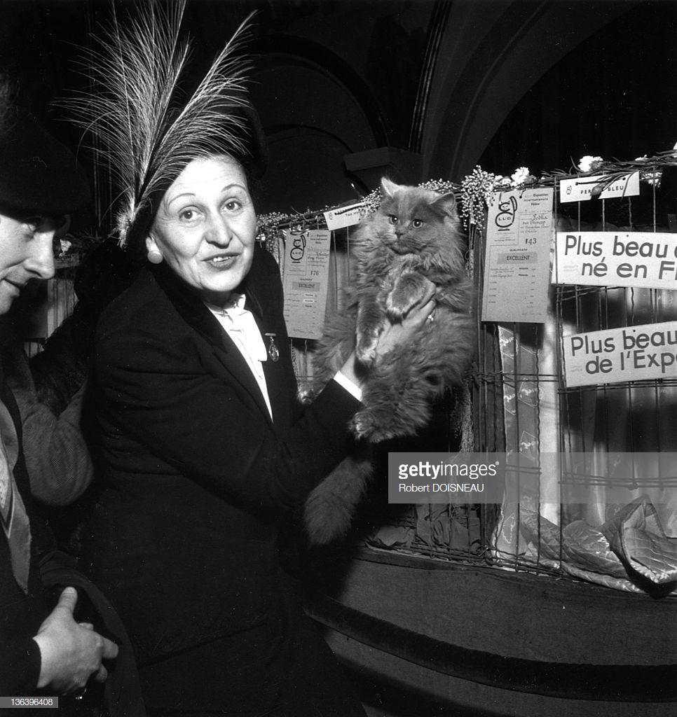 1946. Женщина со своей кошкой во время конкурса на самую красивую кошку