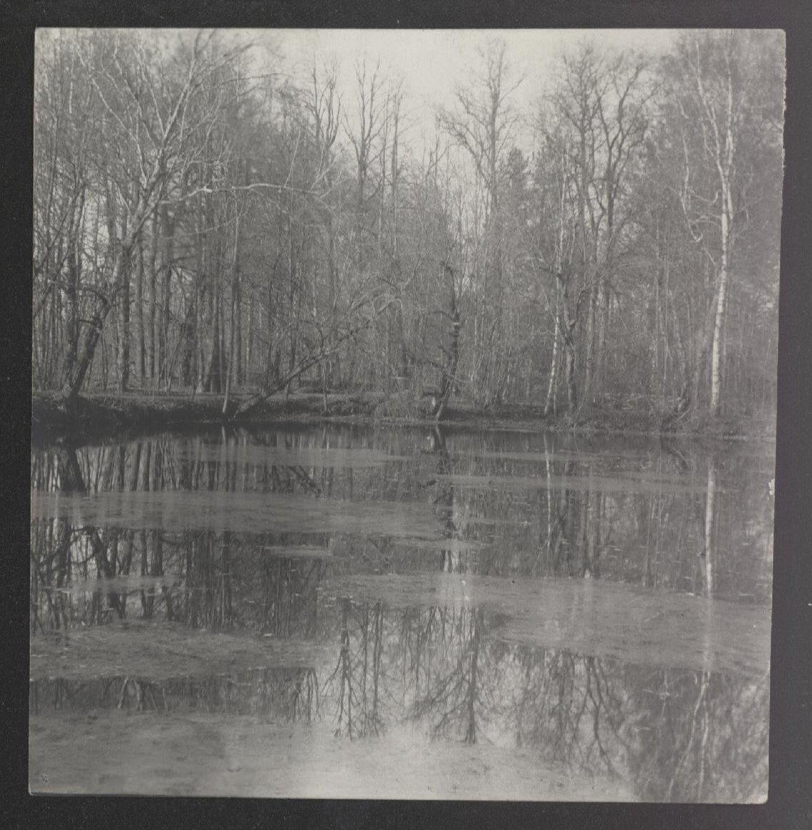 1906. Окрестности Москвы. Пейзаж с озером. Сентябрь