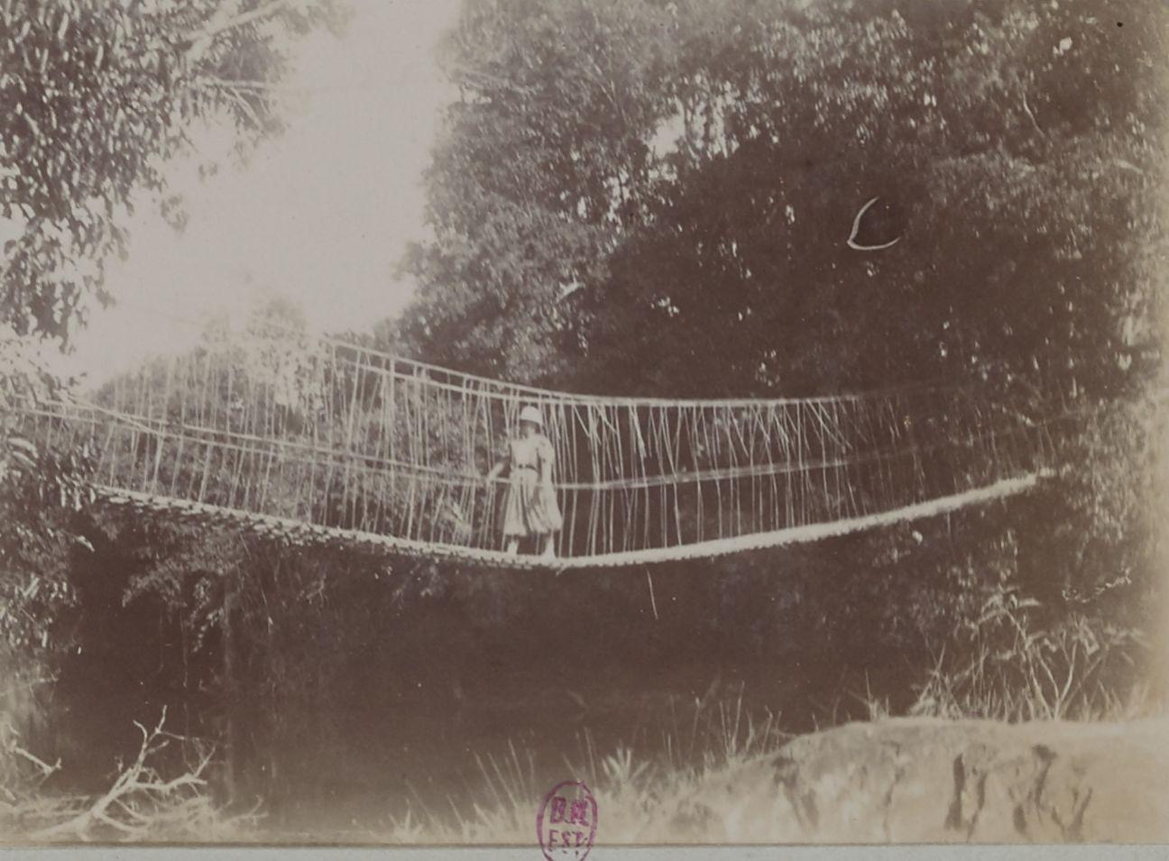 Мост из ротанга и лиан на Дак-Чире