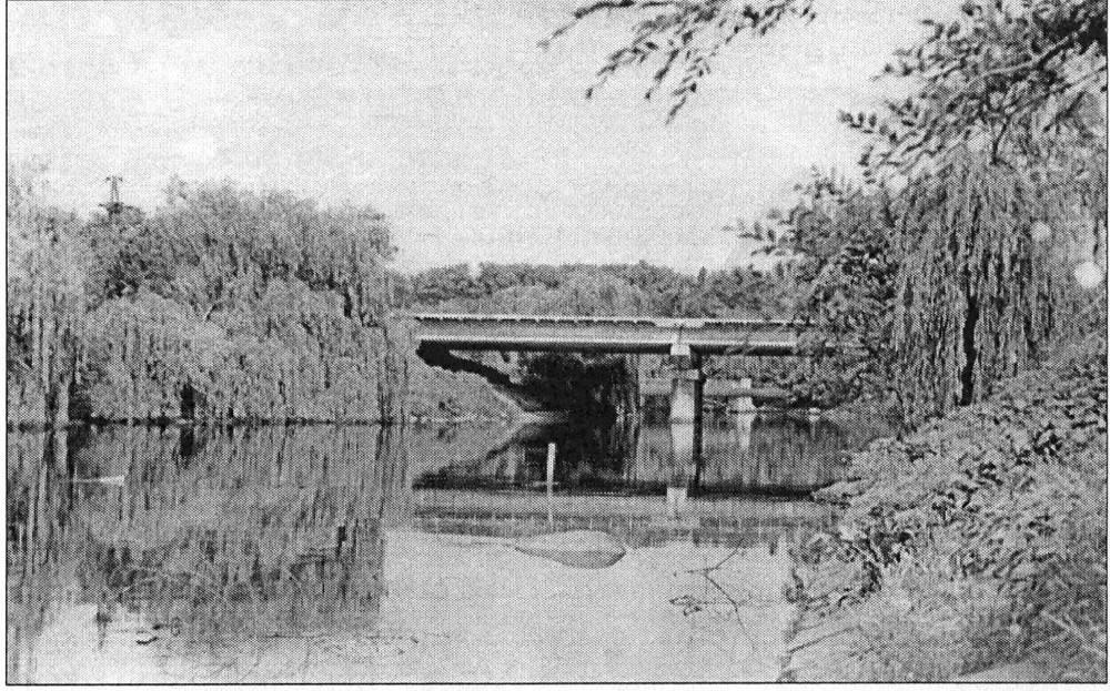 Окрестности Александровска. Железобетонный двухпролетный мост в Дубовой роще.