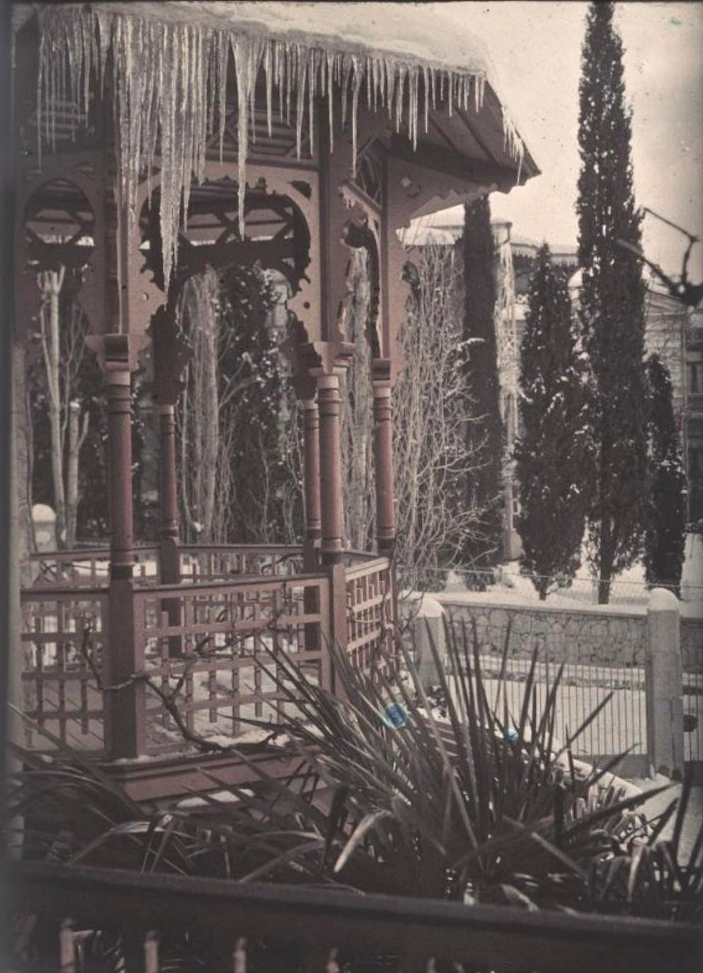 1910-е. Зима в Ялте. Оттепель