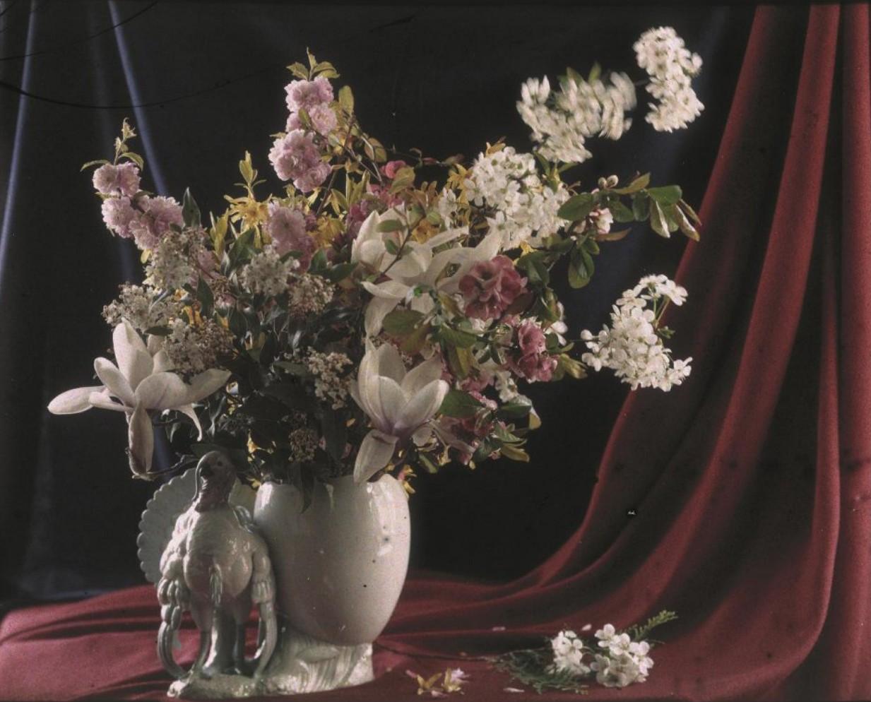1910-е. Цветы в вазе