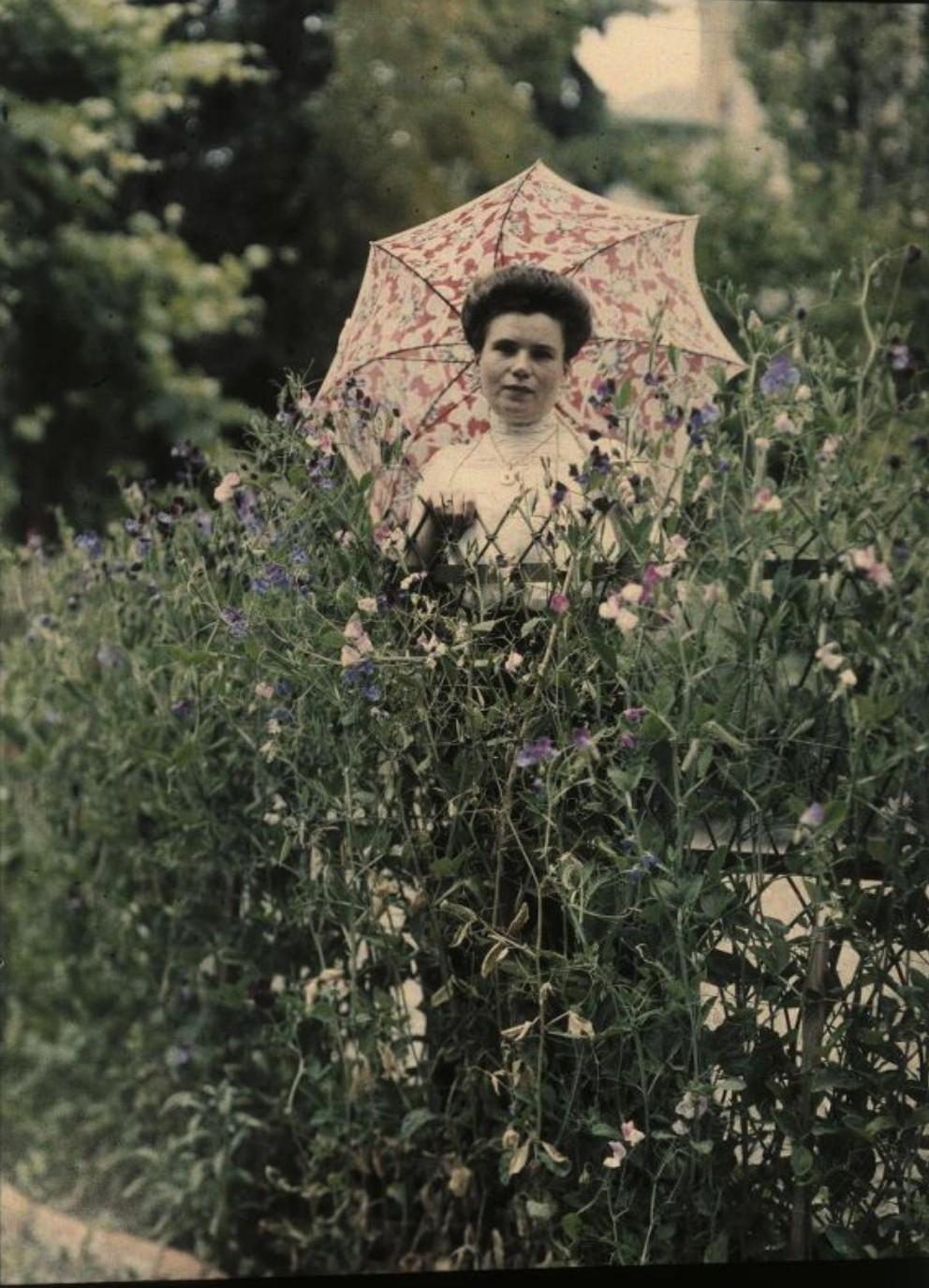 1914. Софья Андреевна Козакова