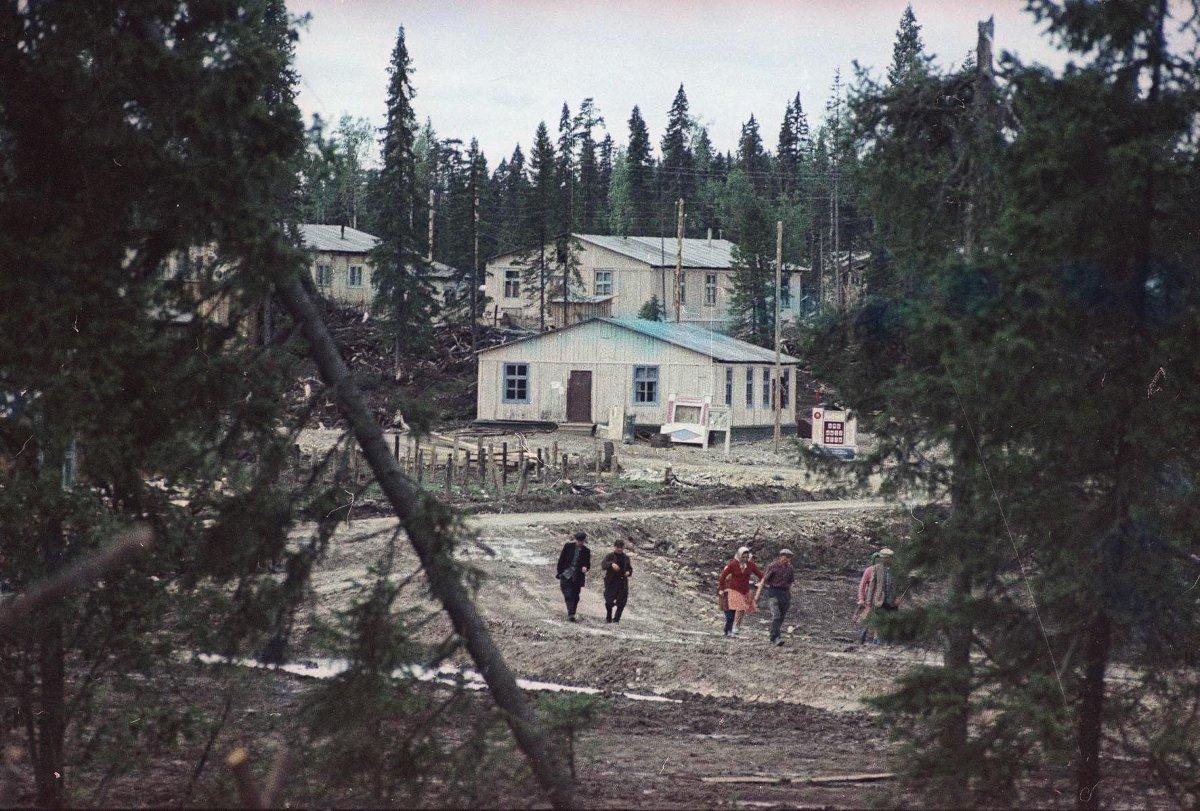 Вид на поселок. Архангельская обл., Холмогорский р-н, пос. Луковецкая База