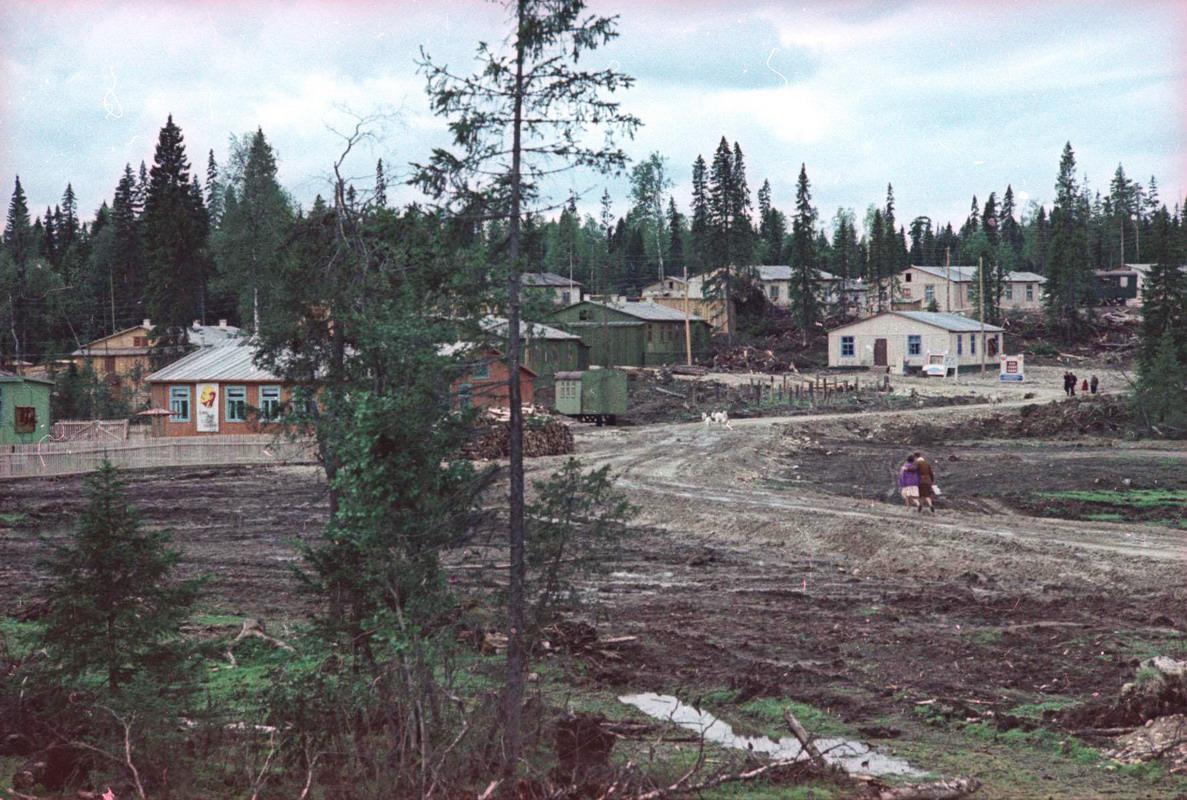 Поселок в лесу