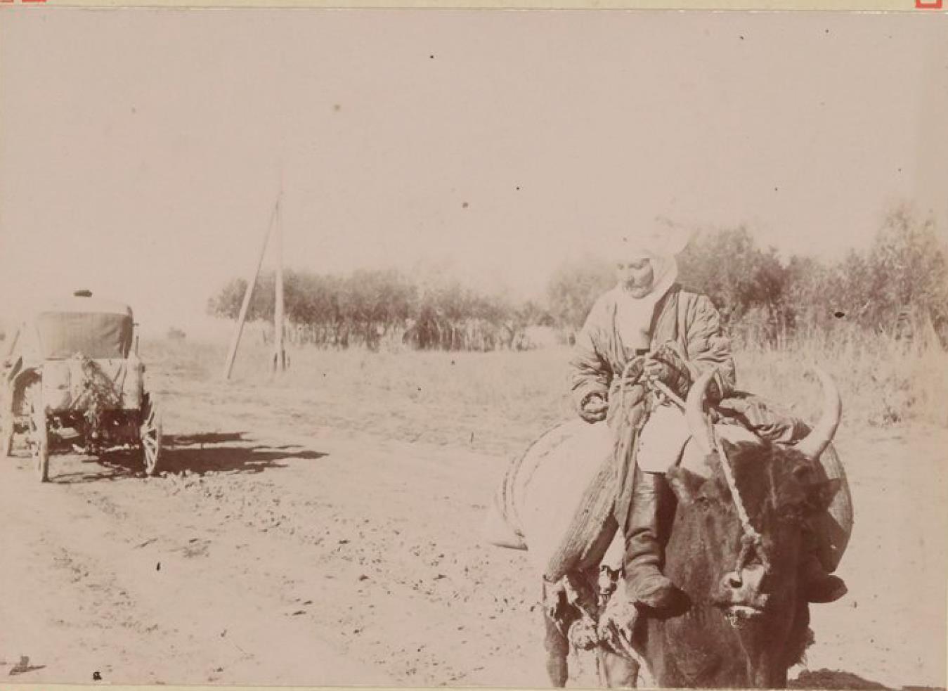 33. Киргизка
