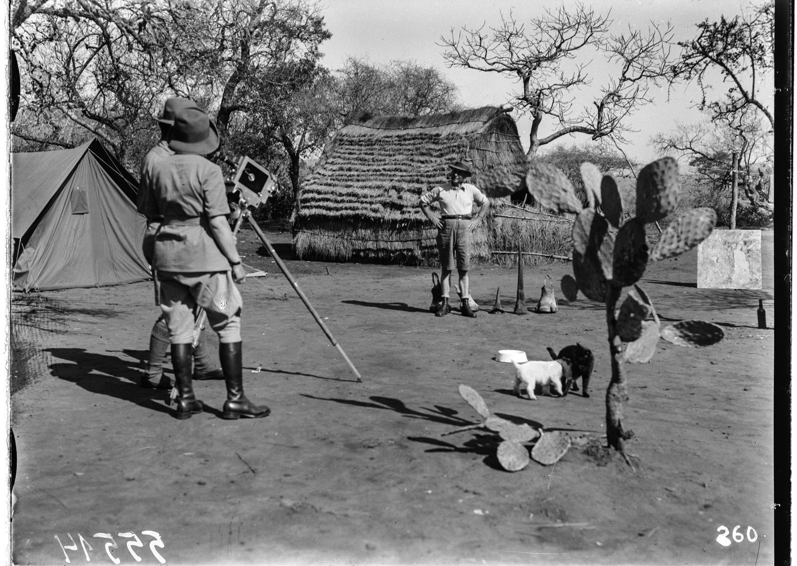 Южно-Африканский Союз. В окрестностях Претории. Участники экспедиции снимают в поселке. Камера направлена на собаку и кошку