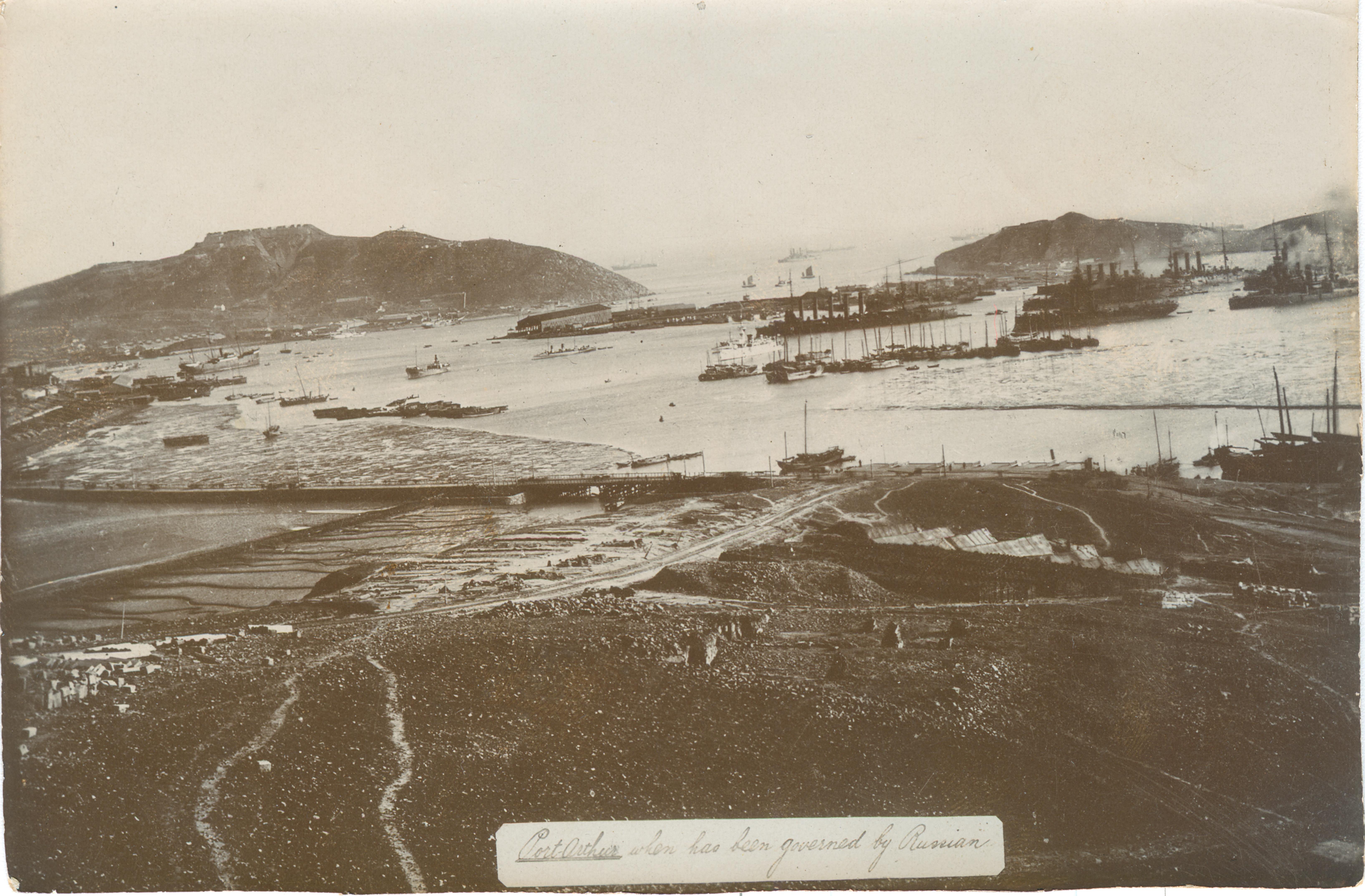Вид на Западную гавань порта, мыс Тигровый хвост