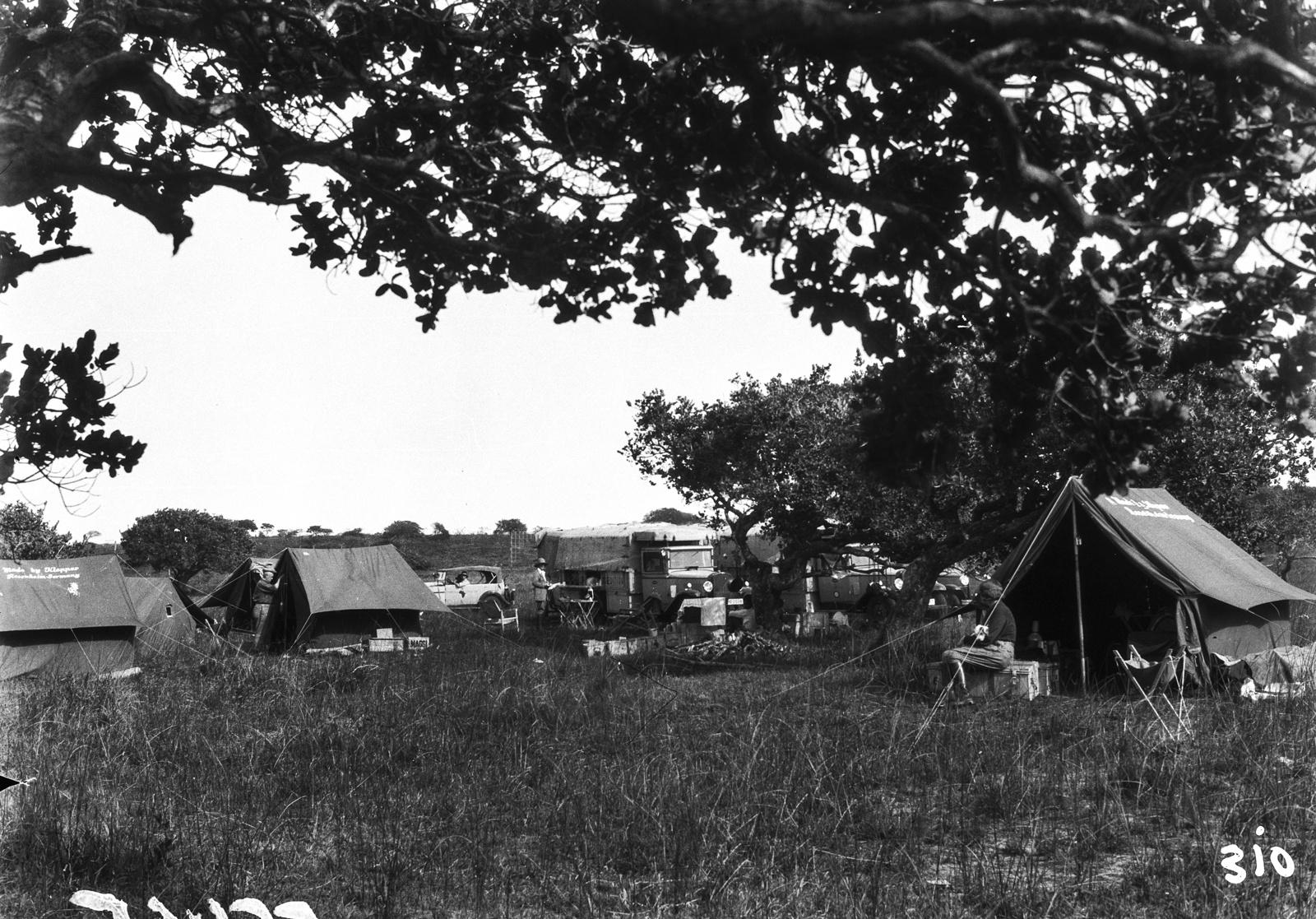 Южно-Африканский Союз. Квазулу-Наталь.  Экспедиционный лагерь в парке Умфолози