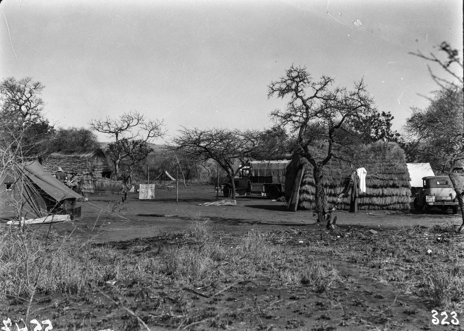 Южно-Африканский Союз. Квазулу-Наталь. Экспедиционный лагерь в поселении аборигенов.