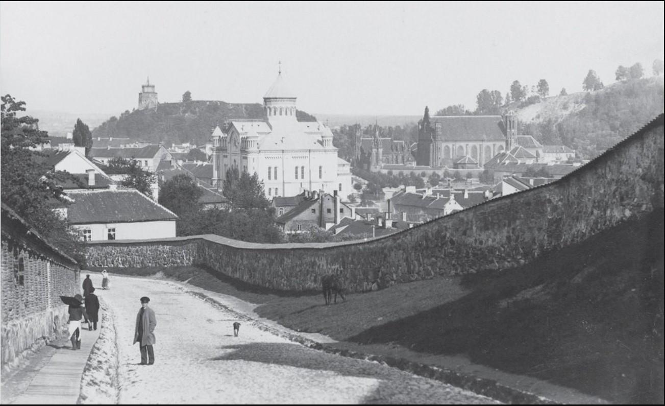 Вид на город с улицы Бокшто. 1896
