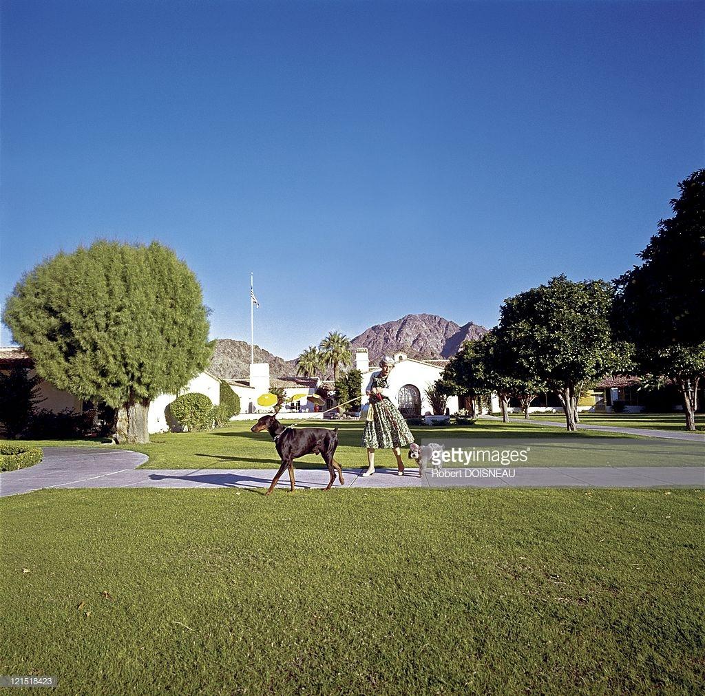 1960. Палм-Спрингс. Женщина выгуливает собаку