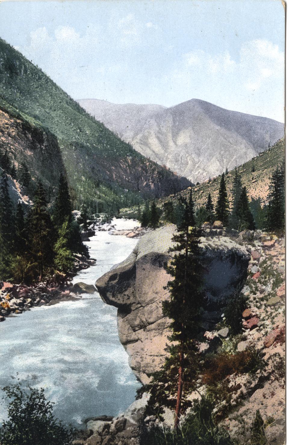 Река Аргут около устья