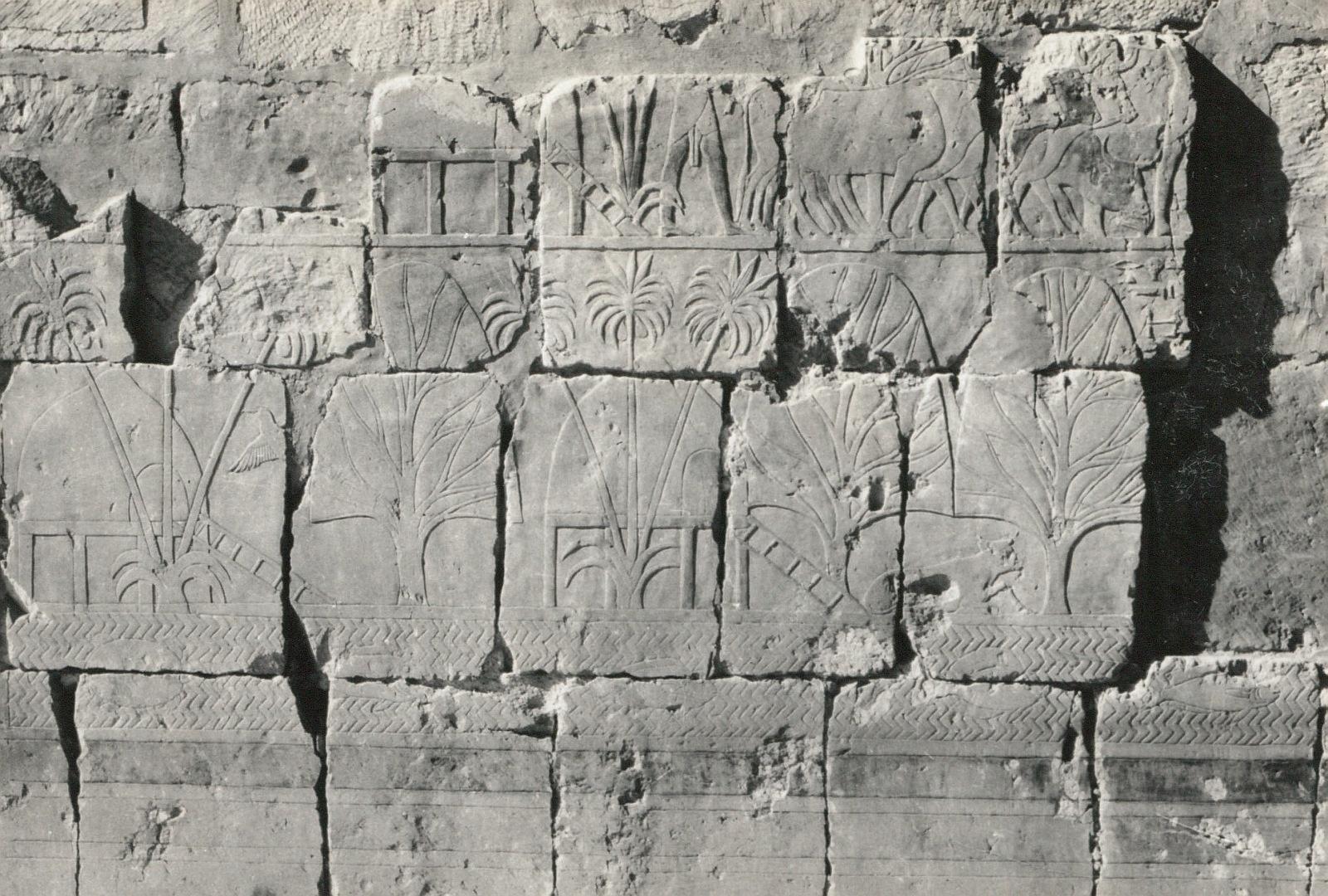 Дейр-эль-Бахри. Заупокойный храм Хатшепсут. Рельеф