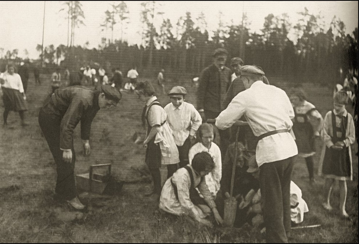 Посадка деревьев на острове Голодай в День леса.  17 мая