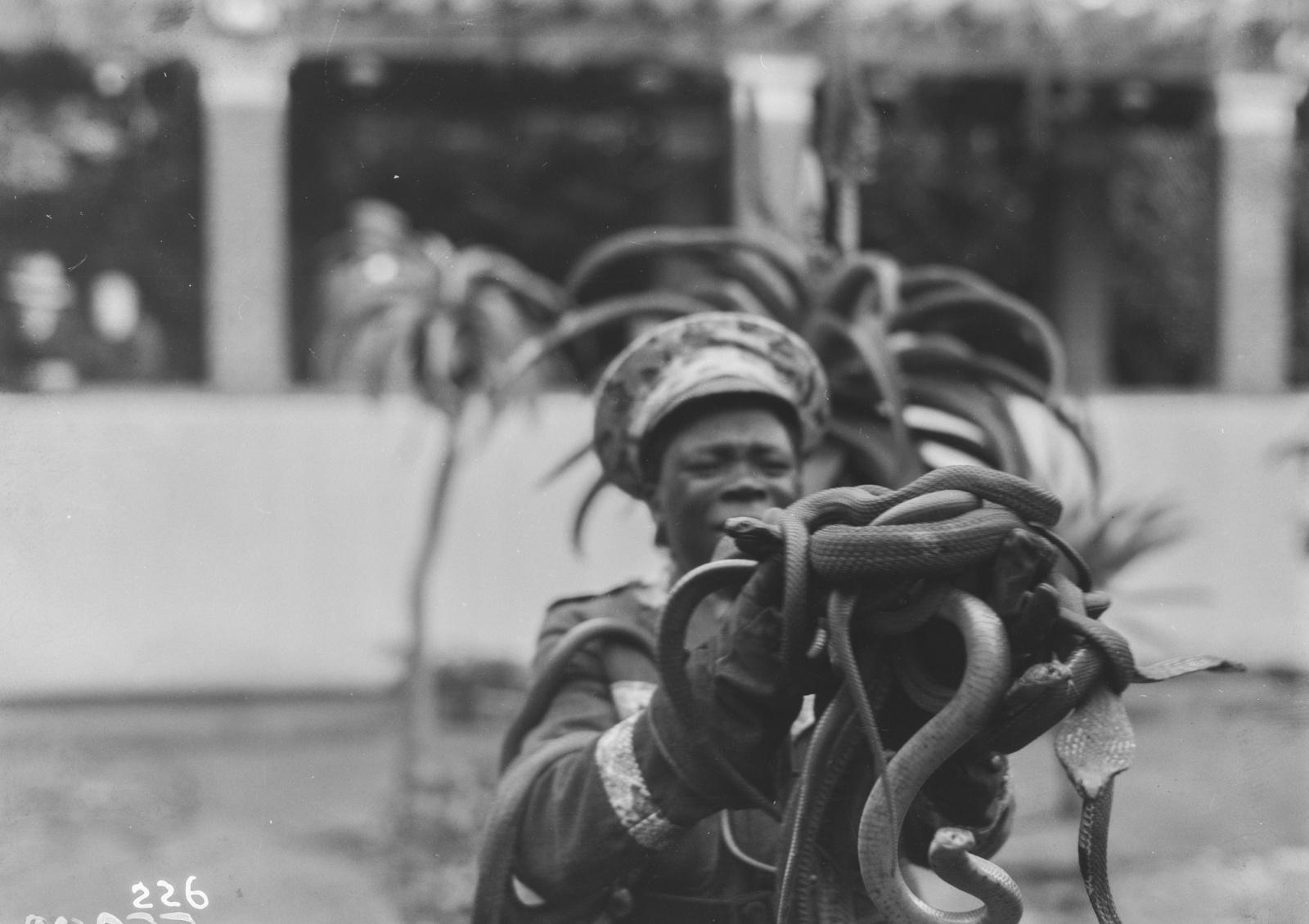 Южно-Африканский Союз. Порт-Элизабет. Посещение фермы по разведению змей