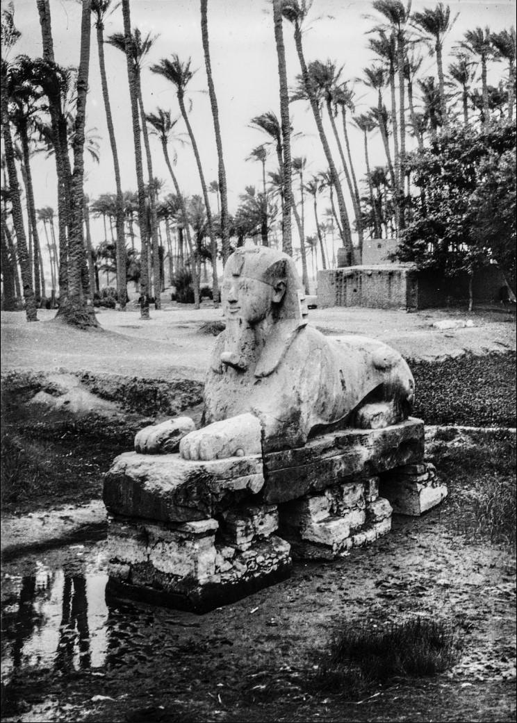 Алебастровый Сфинкс в руинах Мемфиса