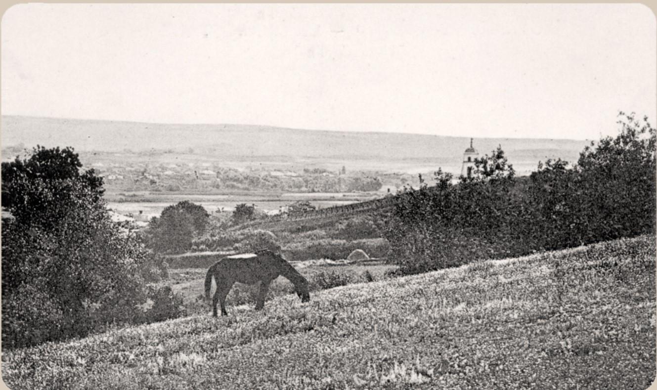 Вид на предместья Пески и Пушкарное