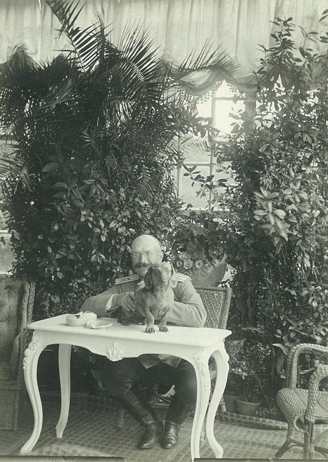 В.П. Всеволожский с собакой в зимнем саду усадебного дома в Рябово,