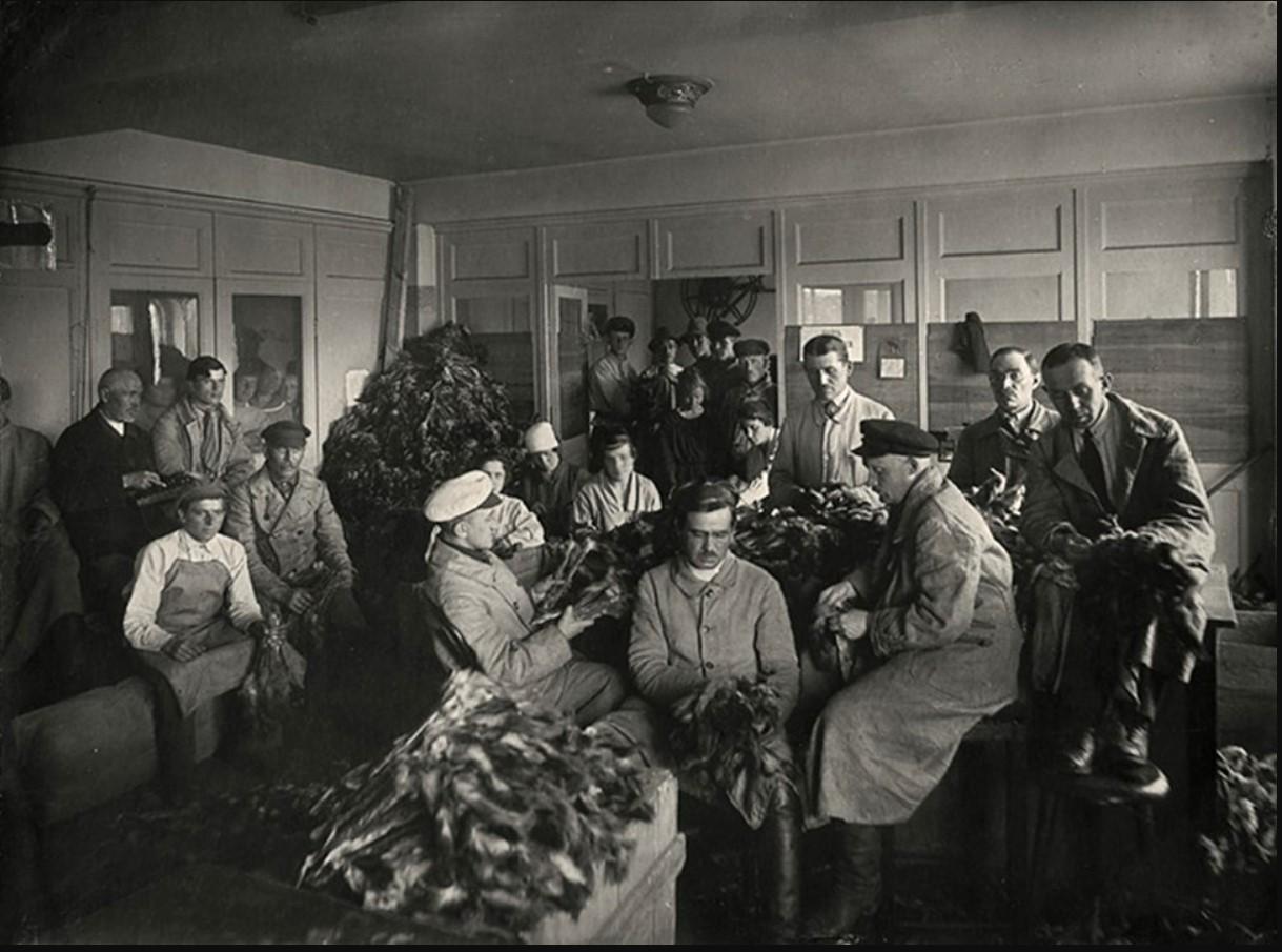 1923. Управления Петроградского исполкома