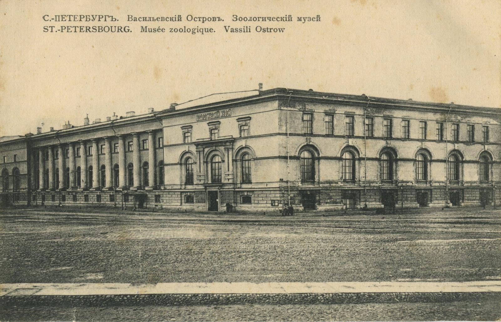 Васильевский остров. Зоологический музей
