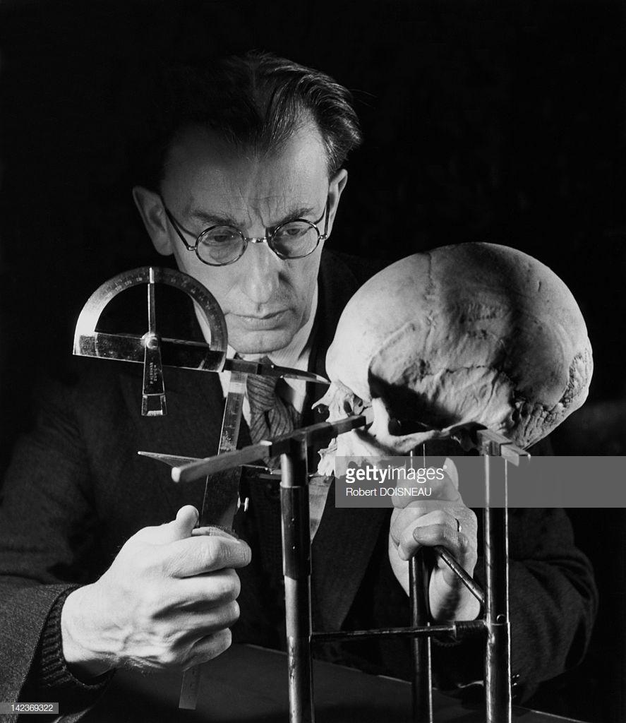 1943. Французский антрополог и палеонтолог Анри Валуа в лаборатории антропологии Музея Человека