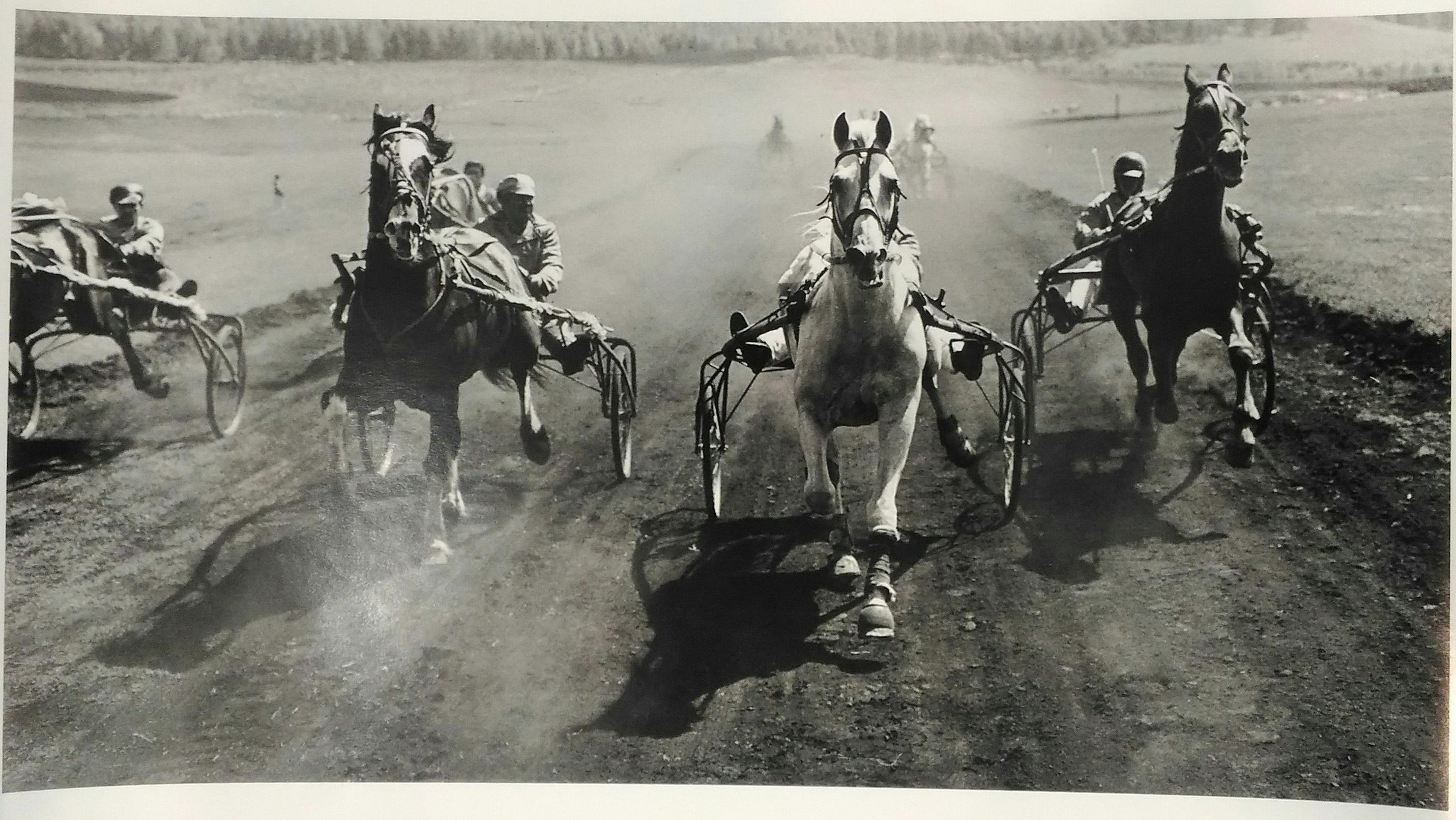1950-е.  Бальтерманц Д.Н. «Скачки»