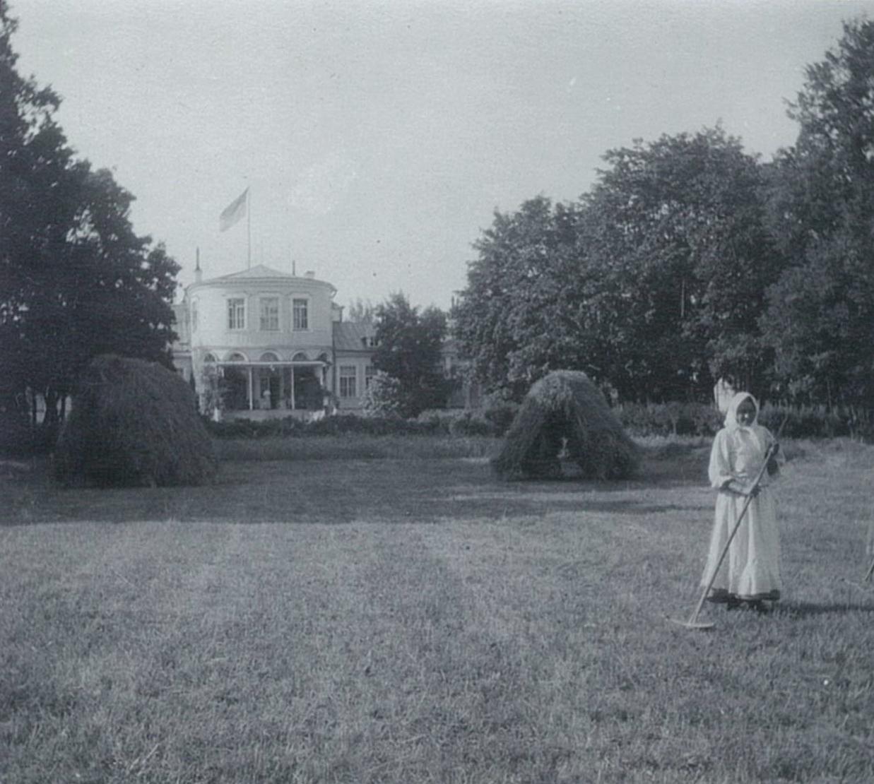 Луг со стогами сена перед садовым фасадом усадебного дома