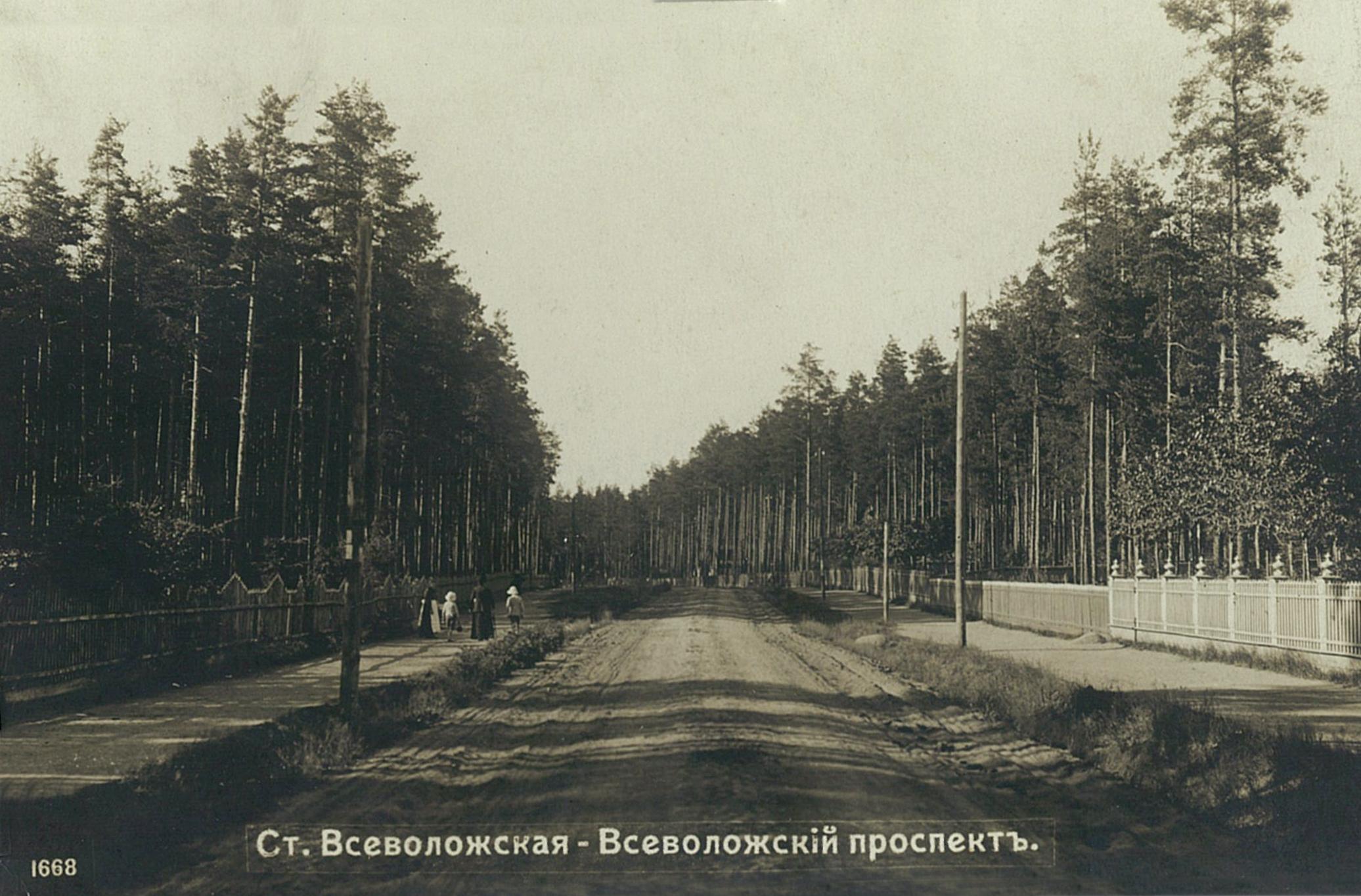 Всеволожский проспект летом. 1914