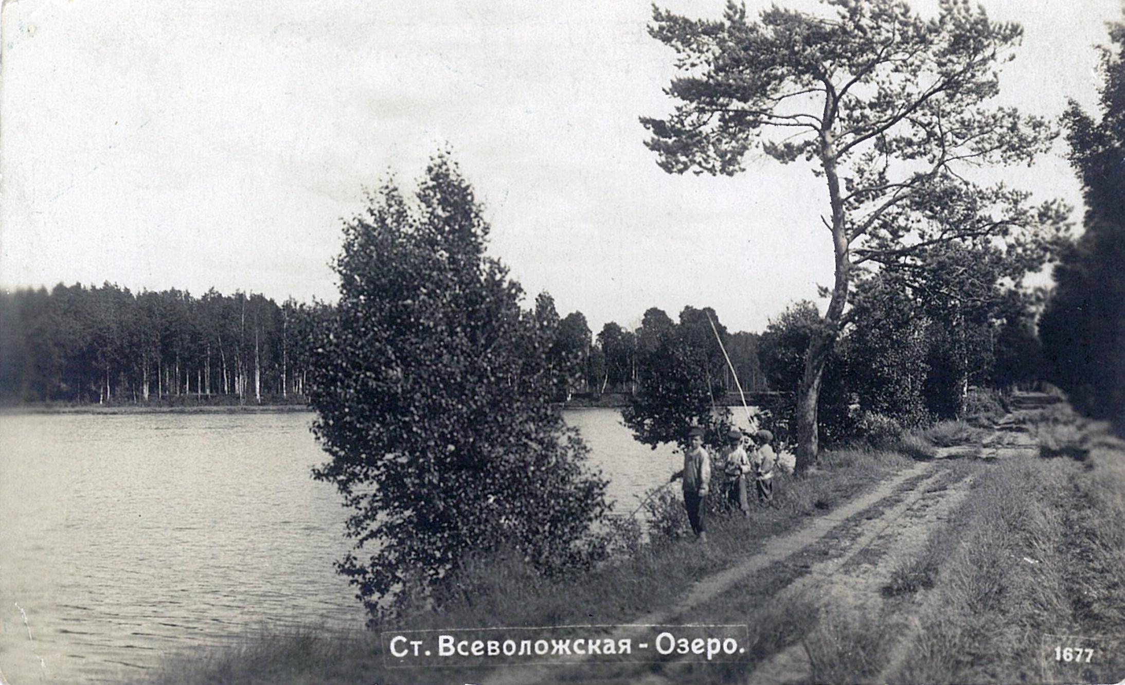 Озеро Васильевское