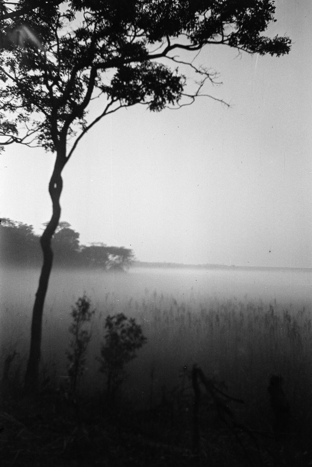 Касемпа. Утренний туман в пойме Мусонведзи