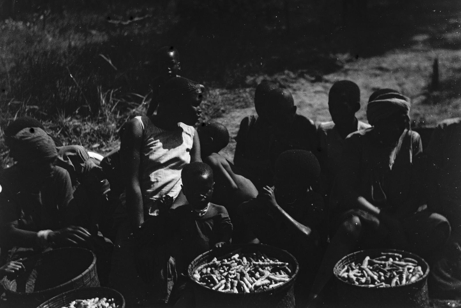 Между Капири Мпоши и рекой Лунсемфва. Жители деревни пытаются продать тыквыц и сладкий картофель..