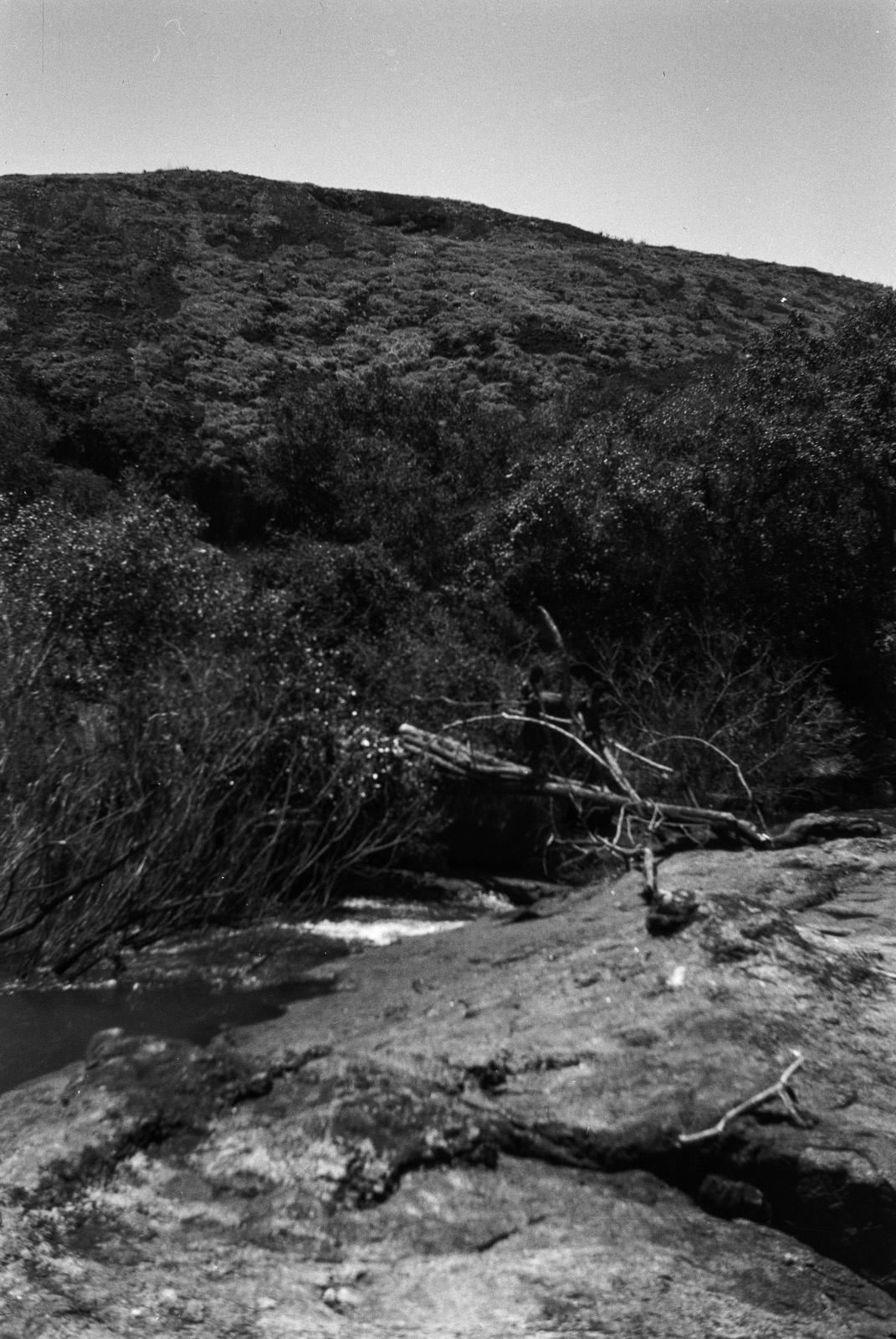 Между Капири Мпоши и рекой Лунсемфва. Маленький простой мост через реку Лунчу