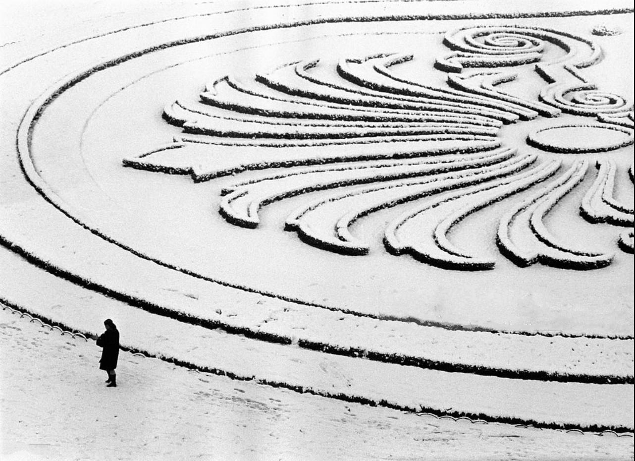 1968. Парк под снегом. Париж