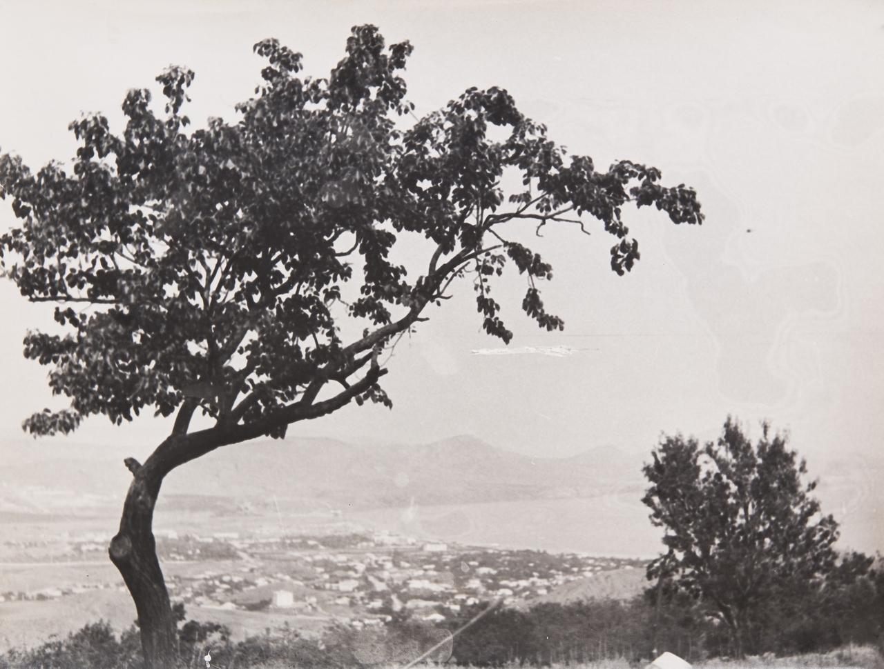 1960-е. Комовский А.Г. «Коктебель. Вид с Сюрюк-Кая»