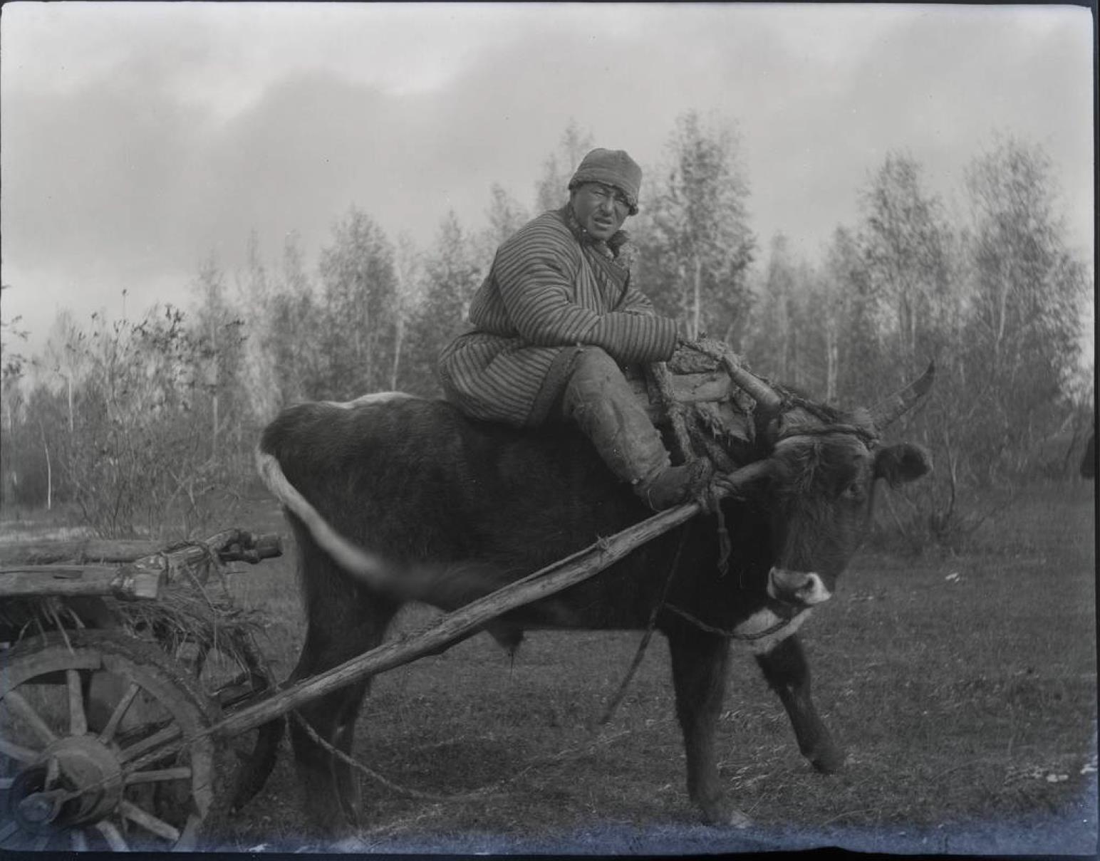 35. Киргизская степь. Киргиз едет на волеутром