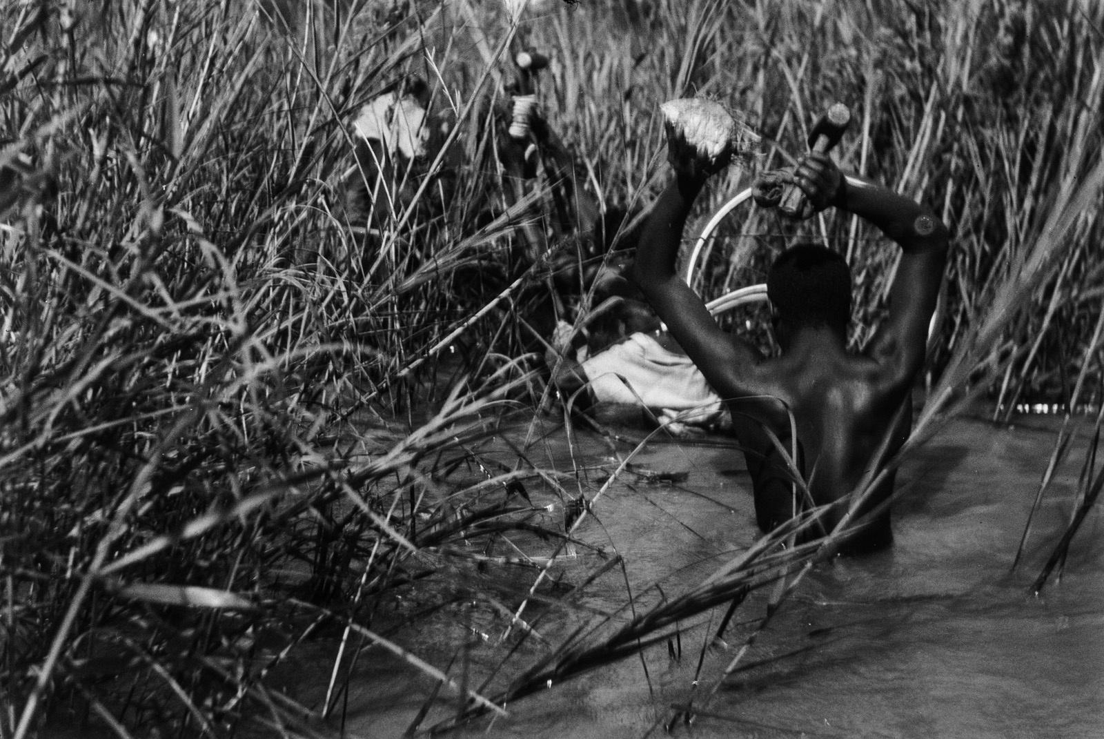Между Капири Мпоши и рекой Лунсемфва. Носильщики пересекают Лунчу во время отлива