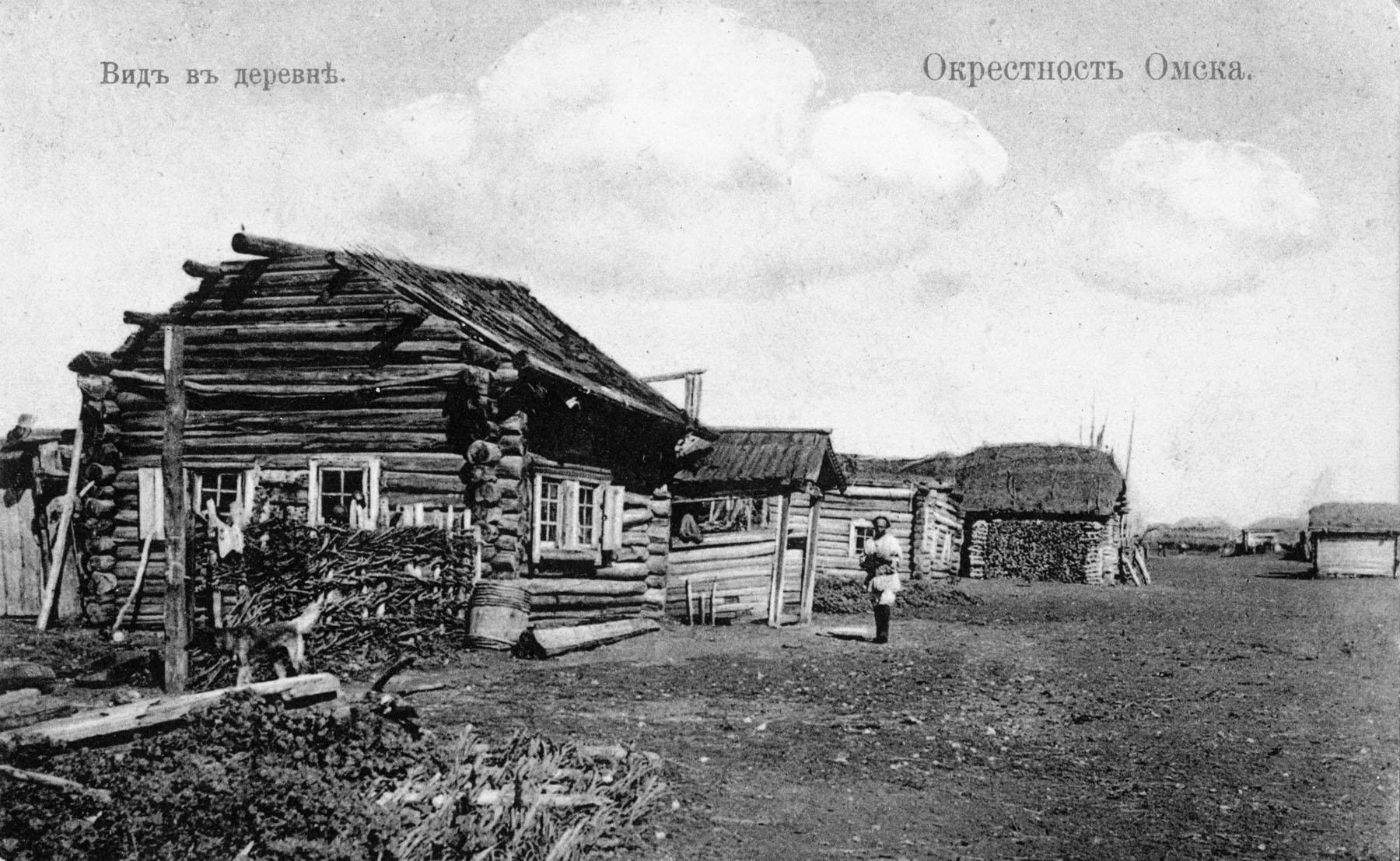 Окрестности Омска. Вид в деревне.