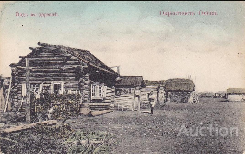 Окрестности Омска. Вид в деревне