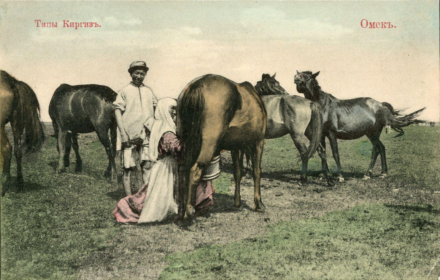 Типы киргиз